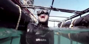 Go Shark Cage Diving in South Africa